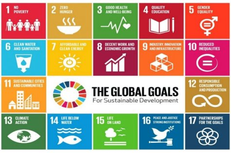 "International student essay competition  ""If i were a business leader … for advancing the sustainable development goals (SDGS)"""