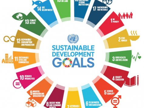 Essay sustainable development